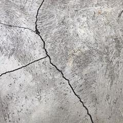 土間/モルタル/コンクリート/素材/マテリアル/暮らし/... コンクリートに入った亀裂 何故だかストー…