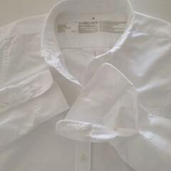 シンプルコーデ/白シャツ/ファッション/無印良品/暮らし これからの季節、出番が多くなる至ってシン…