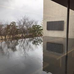 外出自粛/金沢/ミュージアム/美術館/旅行 久々の投稿  急遽旦那さんのお休みがとれ…