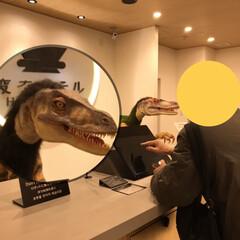 """夕食/おでん/海鮮丼/変なホテル/旅行/金沢 旦那さん🦖恐竜相手にチェックイン!  """"…"""