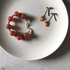 オレンジ/天然石アクセサリー/アクセサリー/わんこ同好会/おでかけ/キッチン/... 寒い中、ちょっぴり春コーデ  唯一の明る…