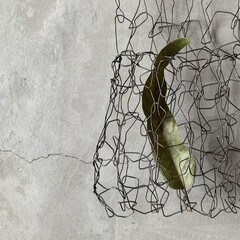 網かご/ワイヤー/収納/簡単/雑貨/暮らし ワイヤーのグニャグニャ編み ドライを入れ…
