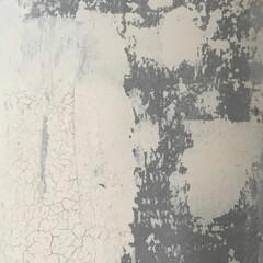 セルフビルド/塗装/壁/material/素材/日常のふとしたこと/... 未完成がゆえの完成された壁  塗装のヒビ…