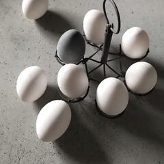 日常のふとしたこと/消臭効果/卵/珪藻土/100均/ダイソー/... ひとつだけ黒い卵 湿気や臭い取りには抜群…