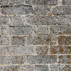 """日常のふとしたこと/煉瓦積み/material/素材/塀 歩いていて見つけた""""朽ちた塀"""" 好きなm…"""