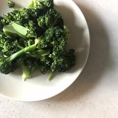 美味しい/採れたてお野菜/わたしのごはん/フード/春の一枚 頂きものの採れたてブロッコリー🥦  沸騰…