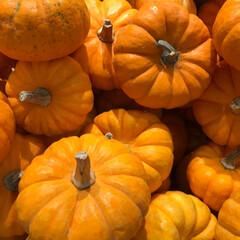 季節の行事/おでかけワンショット/かぼちゃ/9月/ハロウィン/イケア/... あと少しで10月 IKEAで見かけたハロ…