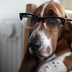 日常のふとしたこと/メガネ/暮らし メガネとは全くの無縁でしたが最近では違っ…