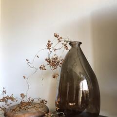 ヘクソカズラ/ZARAHOME/SALE/ガラスの花瓶/枯れた草/ドライ/... 雑草には見えない… 丸で宝石のよう…  …