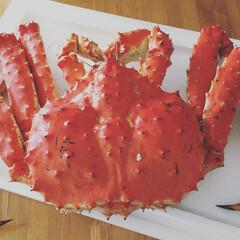 特別/大好き/タラバ蟹/かに/蟹/フォロー大歓迎 釧路からタラバ蟹が届いたーーーっ‼️ 冷…(1枚目)