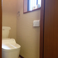 ナチュラル トイレ交換と塗り壁