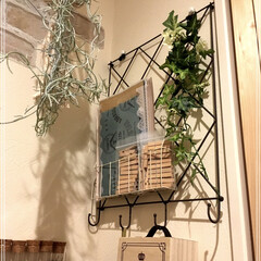 壁掛け収納/収納/セリア/ワイヤーレターラック/アイアン壁掛けインテリア/ダイソー/... 工具を壁掛け収納にしました♩ 材料は、私…