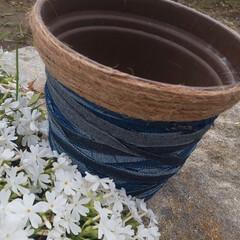 ガーデニングアイデア/ガーデニング雑貨/ガーデニング/植木鉢リメイク/植木鉢/雑貨/... 植木鉢のリメイクしてみました❗️   少…