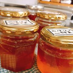 蜂蜜/柚子/リミアの冬暮らし/フォロー大歓迎 柚子を沢山頂いて何週間〜😅 やっと柚子茶…