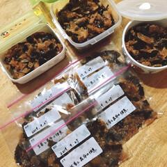 新生姜/ご飯/フォロー大歓迎/ご飯のおとも/食欲の秋 新生姜が採れたので、久しぶりに昆布と佃煮…