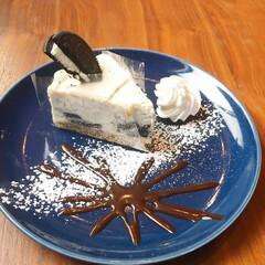 オレオ/チーズケーキ/オレオチーズケーキ/お花見/花見/ケーキ/... 大好きなオレオチーズケーキ。 三軒茶屋に…