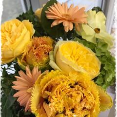 癒される/盛花/生花/yellow/なぜか 勝った/本気のジャンケン お花は やっぱり癒されます💐 新店舗のオ…