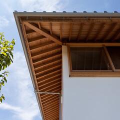斑鳩の家/中山建築設計事務所/中山大介/木の家/家づくり/住まい/... 斑鳩の家|中山建築設計事務所