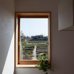 木の家/家づくり/住まい/暮らし/不動産・住宅/建築/... 斑鳩の家|中山建築設計事務所(1枚目)