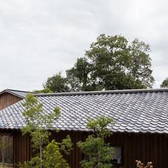 木の家/家づくり/暮らし/住まい/不動産・住宅/建築/... 山陵の家|中山建築設計事務所