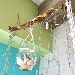 セルフリノベーション/流木/イルミネーションライト/水色の壁/黄緑の壁/サンゴ/... セルフリノベーション 壁紙を貼り替えた壁