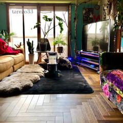 リビング/ムートン/黒いラグ/ヘリンボーン/床DIY/マンション/... 自分でDIYした床 職人さんも嫌がるとい…(1枚目)
