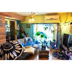 板壁DIY/ビーチハウス風/海を感じるインテリア/マンション/セルフリノベーション/NO GREEN NO LIFE/... 皆さんのお家は台風の影響 もう落ち着きま…