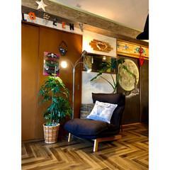 グリーンのある暮らし/リビング/サメの歯/大人西海岸/西海岸インテリア/ビンテージ風/... 今まで3台並べて置いてたソファ 床をセル…