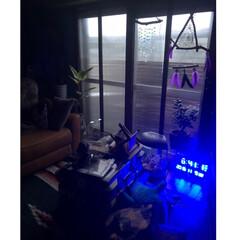 セルフリフォーム/セルフリノベーション/二重窓DIY/早朝/雨の日/インテリア/... 雨ですねー  昨夜いつもより早く寝たら …