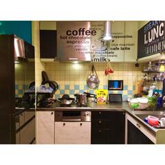 小窓/オニキスミラー/冷蔵庫/パナソニック/ニトリ/ウォールステッカー/... キッチンにて 洗い物ほぼ完了  下側の扉…