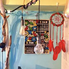 LED/流木/エジソン電球/ハンドメイド/水色/ペイント壁/... 【2019年 のカレンダー】  チャイハ…
