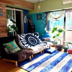 マンション/流木/ビーチハウス風/海を感じるインテリア/リビング/板壁DIY/... ボーダー 柄のある部屋  お気に入りのラ…