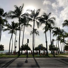 ハワイ/海外旅行/旅行/風景/グルメ/フード/... 今年の初めに行ったハワイ🏝  だいぶ恋し…