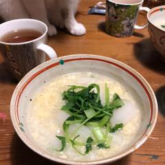 七草粥/冬/おうちごはん 七草かゆ食べて、元気な一年を!