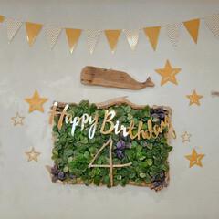 バースデーガーランド/バースデー/流木リメイク/流木インテリア/流木/ダイソー/... わたしの手作り🔧  息子の誕生日のバース…