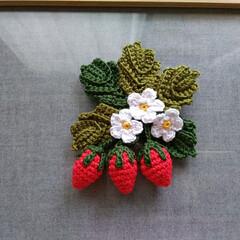 いちご/レース糸/ブローチ/ハンドメイド/雑貨/ファッション/... オリムパスのエミーグランデの糸でいちごの…