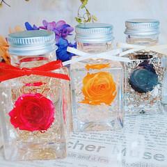 インテリア雑貨/花のある暮らし/一輪/Rose/バラ/ミニボトル/... ミニボトルハーバリウム