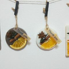 インテリア雑貨/いい香り/ワックスバー/サシェ/ドライフルーツ/アロマワックスサシェ/... オレンジのアロマワックスサシェ♡