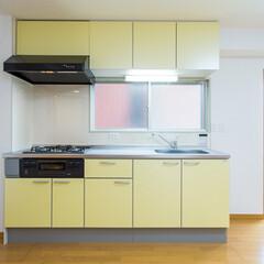 キッチン/台所/システムキッチン/水まわり 目地掃除が大変だった壁タイルを明るいマー…