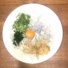 磁器 中華食器 高級青地 丼 6.5寸(中華鍋)を使ったクチコミ「今日は体調不良に。そんな中、相方さんが仕…」