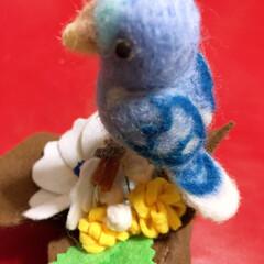 本物飼いたい/うそこペット/ハンドメイド 子供の頃は、文鳥やセキセイインコ、クイナ…(4枚目)