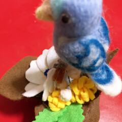 本物飼いたい/うそこペット/ハンドメイド 子供の頃は、文鳥やセキセイインコ、クイナ…(3枚目)