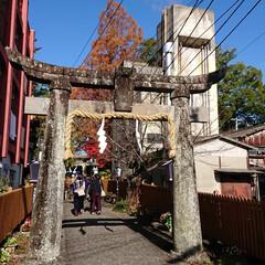 風景 佐賀!嬉野温泉!豊玉姫神社、美肌の神様と…(1枚目)