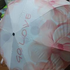 Amazon/アマゾン/折りたたみ傘/リミアの冬暮らし/雑貨/ファッション/... 折りたたみ傘買い直しました。2000円で…