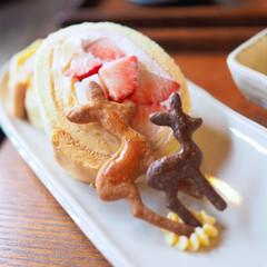 癒やし/和み/sweets/苺/ロールケーキ/姉妹/... 妹と♡カフェにGÖ