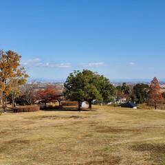 癒される時間/お散歩/景色が好き/居心地よし/景色風景/おでかけ 週末のお出かけ♡反転公園