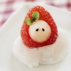 おやつな時間/白あん/和菓子/癒し系/ホッコリ/可愛い/... 苺頭巾♡仲良し苺大福