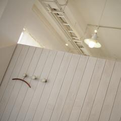 ホワイト/おでかけ/珈琲/カフェタイム/素敵な空間/癒やし/... 素敵なカフェへ☕🥮(3枚目)
