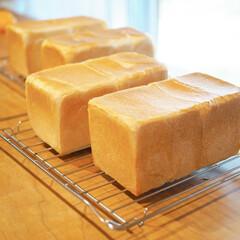 楽しい/食パン/焼き立て/パン教室/暮らし 焼き立て食パン♡ランチ会