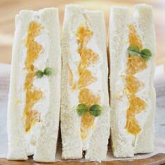 手作り/甘酸っぱい/オレンジが可愛い/フルーツサンド/パン/柑橘/... 八朔♡サンド